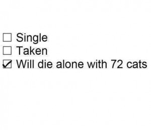 cat, funny, lol, poll, relationship, single, taken, text