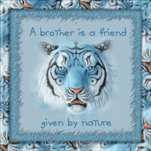 "This very endearing quote, ""A brother is a friend given by Nature ..."