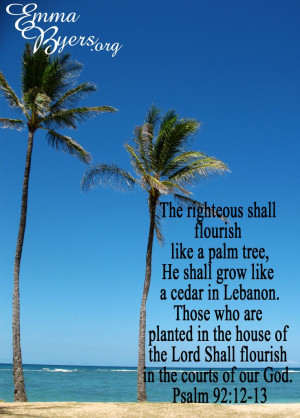 ... Bible Quotes, Palms Trees, Palm Trees, Secret Gift, Inspiration Bible