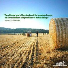 ... of human beings farm hay farms farm agricultur agricultur quot