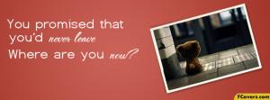Sad Teddy Bear Facebook Timeline Cover Image