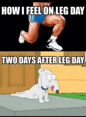 This is how I feel this morning... after a killer workout yesterday. I ...