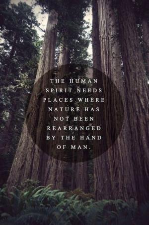 Appreciating nature.