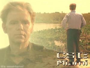 Funny CSI Quotes http://quotes-pictures.feedio.net/funny-horatio-csi ...