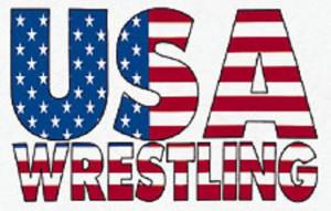 usa wrestling Image