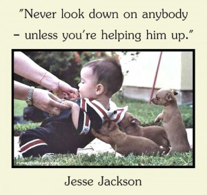 , chihuahua, cute, funny, jesse jackson, puppies, puppy, push, quote ...