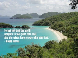 Beautiful quote and beautiful Island (St. John).