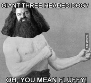 Manly man Hagrid
