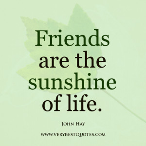 Quote about friend, John Hay Quotes