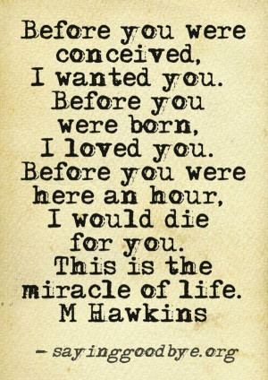 Grief quotes mea