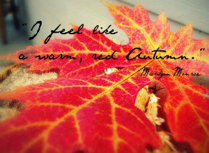 Autumn Quotes Autumn quotes