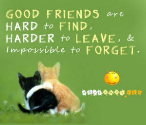Good And Hard Friends friendship quotes