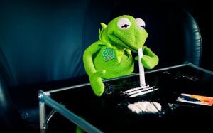 2560x1600 kermit the frog cocaine 1680x1050 wallpaper download