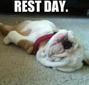 Rest day -- definitely me lately!