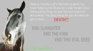 Horse Slaughter Quotes