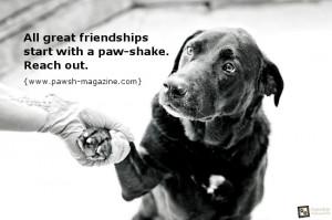 Faithful Dog Quotes http://www.pic2fly.com/Faithful+Dog+Quotes.html