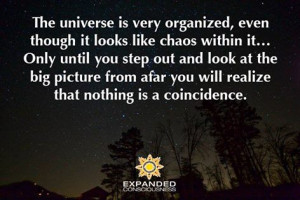 Coincidence (Quote)