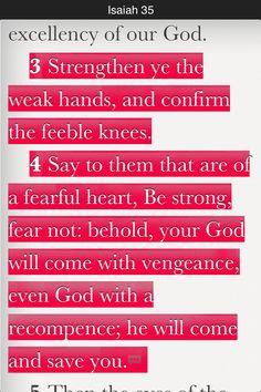 bibl read, joy nois, gods will, read vers, daili bibl