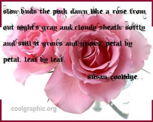 Love Quotes with Rose Flowers