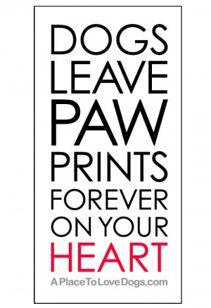 Dogs leave paw prints forever on your heart. | Quote
