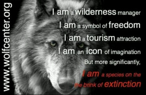 Help save the wolves