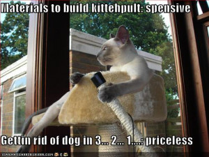 funny dog pictures and quotes at thoughtsfurpaws we ve paired cute dog ...