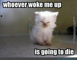 Don't wake him up