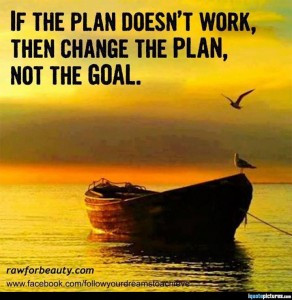 if-the-plan-doesnt-work-then-change-the-plan-not-the-goal kopie