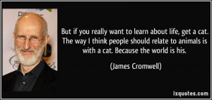 you really want to learn about life, get a cat. The way I think people ...