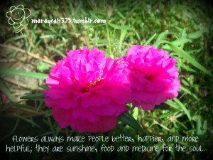 Flowers Quotes Pictures