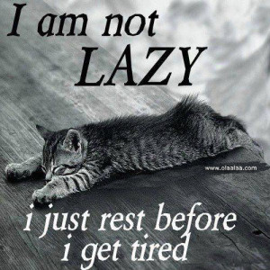 lazy-funny words-funny pictures-photos-images