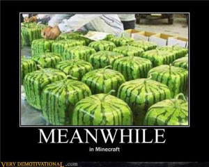 demotivational posters - Meanwhile in Minecraft