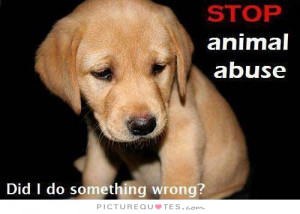 ... Abuse. Did I Do Something Wrong Quote | Picture Quotes & Sayings