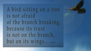 Related Best Quotes Bird Sitting Tree Never Afraid