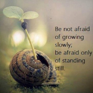 Be not afraid of growing slowly; be afraid only of standing still.