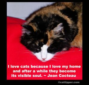 quote-cat-214