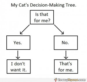 BLOG - Funny Quotes Decisions