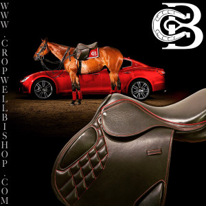 Discuss eBay: Cropwell Bishop Custom Saddle at the Horse Classifieds ...