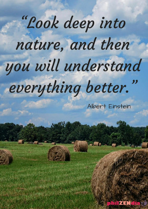 ... into nature, and then you will understand everything photo quote (1