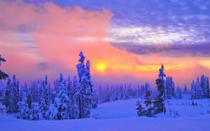 Keywords: Beautiful Winter Scenery Wallpapers, Beautiful Winter ...