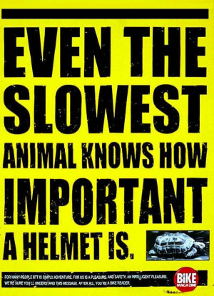 "... The Slowest Animal Knows How Important A Helmet Is "" ~ Safety Quote"