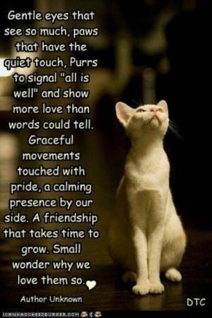 Cat poem.