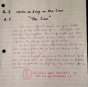 Essay writer funny