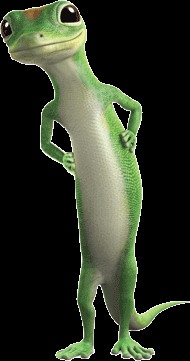 ... around the office than we knew possible! Geico Commercial, Geico Gecko
