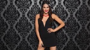 Brie Bella 2015