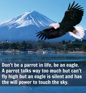 an eagle. A parrot talks way too much but can't fly high but an eagle ...