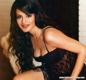 Amisha Patel Hot Saree Stills