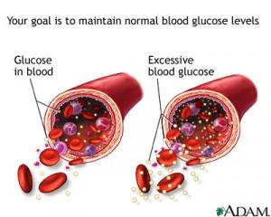 Blood Sugar, Insulin, and Ketosis