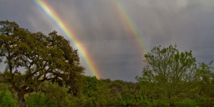 Spring on Hillingdon Ranch - E11