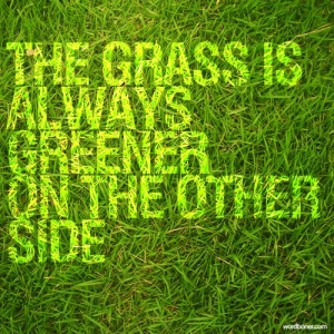 wordboner:Grass is always greenerfunny coincidence?
